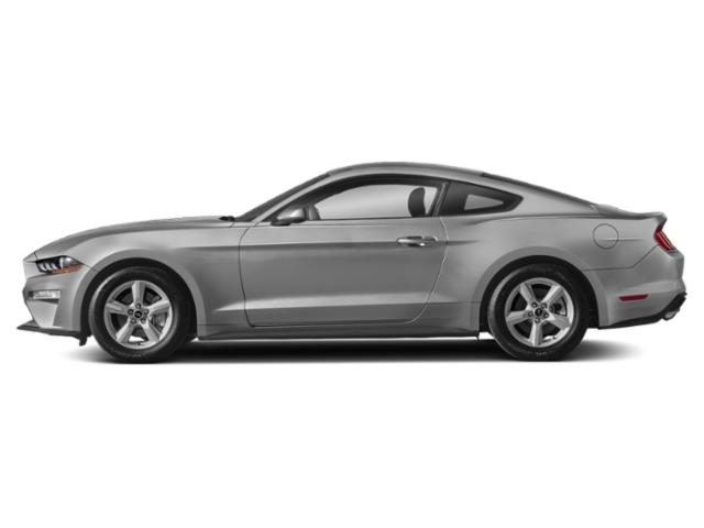 2019 Ford Mustang EcoBoost Fastback photo