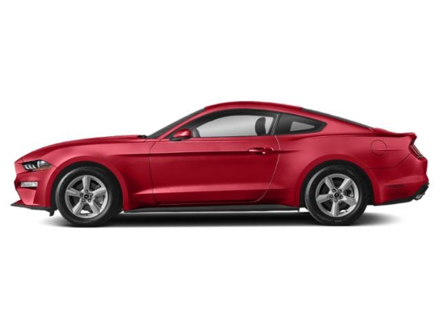 2019 Ford Mustang GT Premium Fastback photo