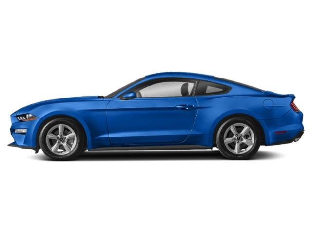 2019 Ford Mustang GT Fastback photo