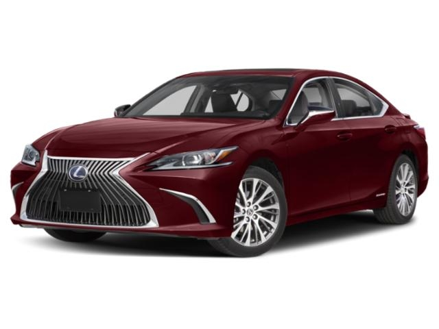 2020 Lexus ES 00h photo